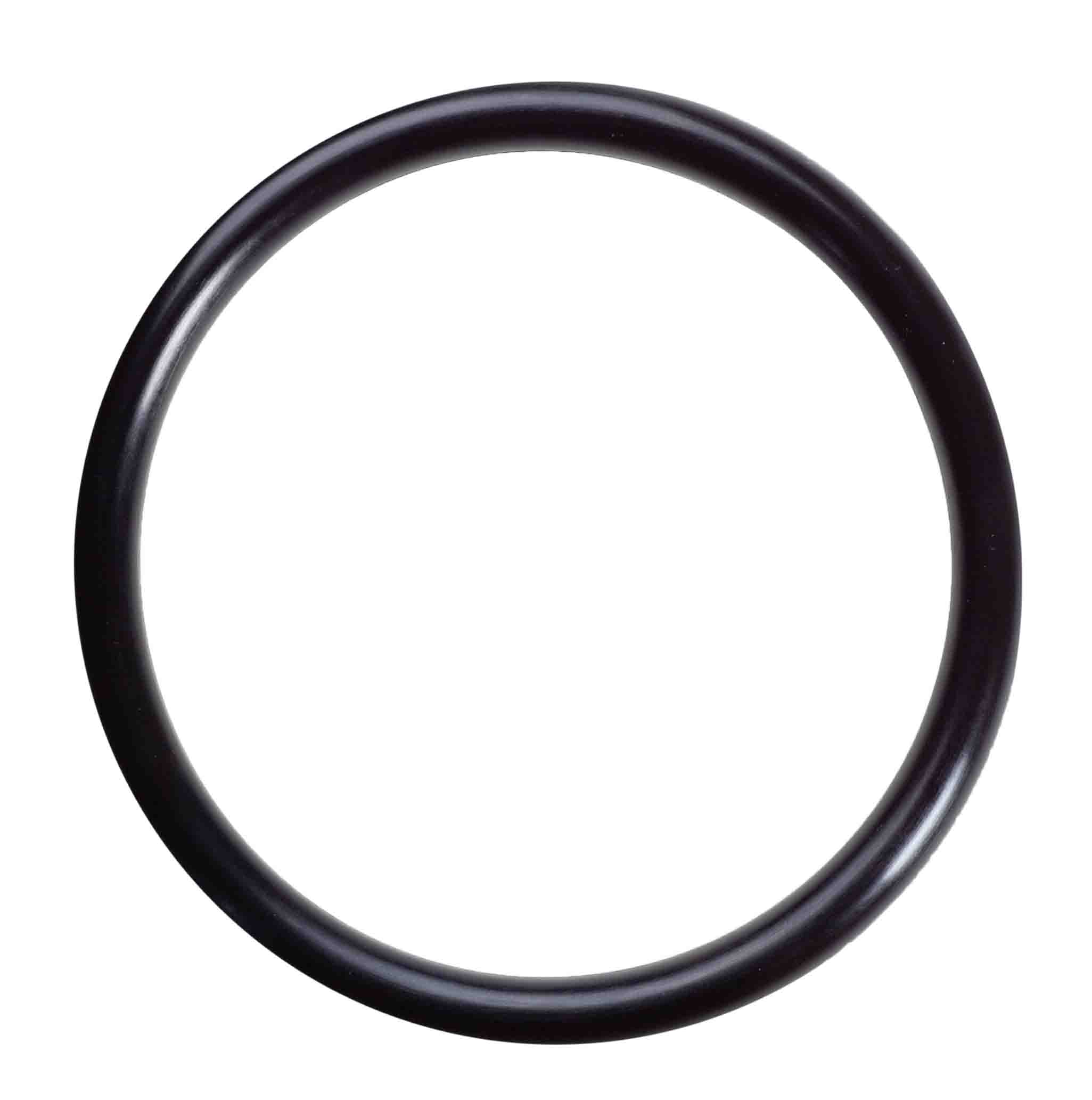 06808 - Housing O-rings for Nanopure II system-  DISCONTINUED